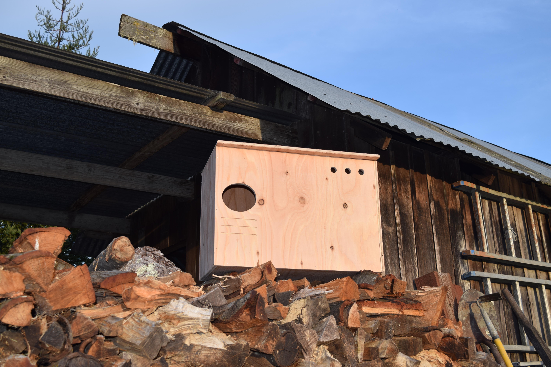 The Owl Abode owl box kit